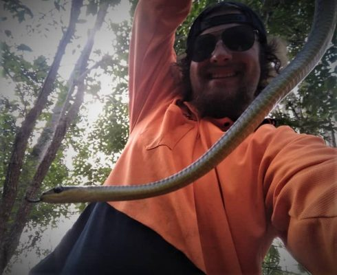 SEQ Snake Catcher servicing Brisbane, Gold Coast, Ipswich, Logan – brown snake caught in forest 3